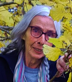Over ons - Anne Tazelaar